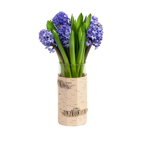Vase, Tara