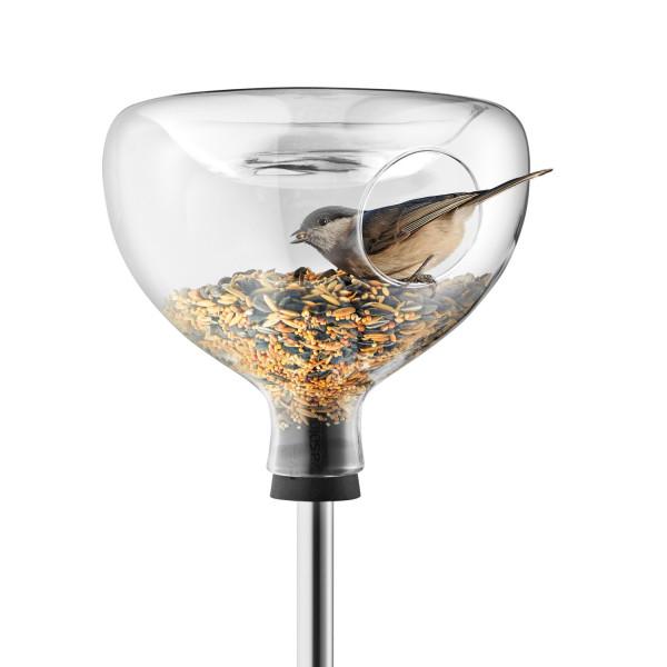 Glasfutterhaus mit Vogelbad