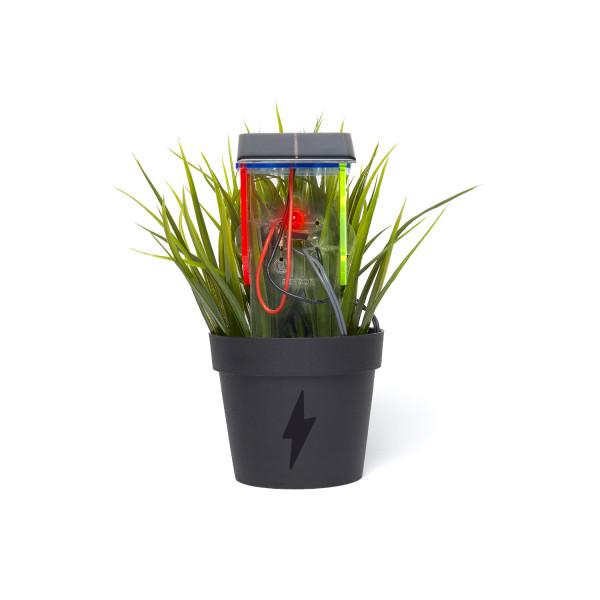 Thirsty Plant Kit Dual